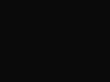 primaeet logo